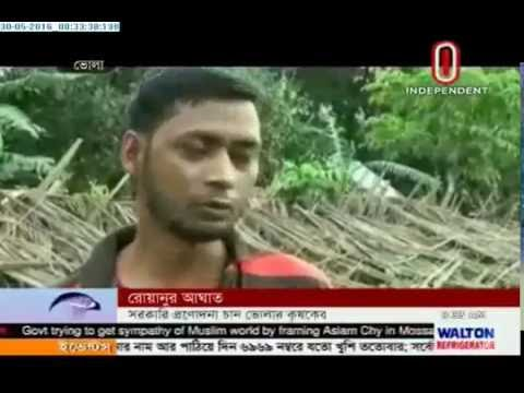 Roanu aftermath: Farmers in Bhola want govt incentives (30-05-2016)
