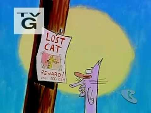 David Feiss, Inc. Presents Lost Cat