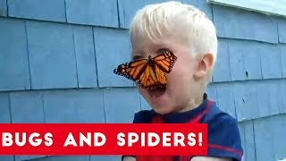Who says that bugs and spiders can't be funny? Come and check out our brand new compilation featuring spiders jumping at you and a cute little bug trying to escape from a pen.Send us a link to your video if you would like to see it in one of our compilations.https://docs.google.com/forms/d/1sR5Y6PyFGOpIMp6-j6XDAH3J07naG4ruRAfXyTOWZRE/viewform?c=0&w=1Check out more Funny Dog Videos ► https://www.youtube.com/watch?v=7zZU-5uPHdQ&list=PLf6Ove6NWsVcM75fCjLk3i-9IkpCmPyXw&index=3Funny Cat Videos ► https://www.youtube.com/watch?v=BoM9-bXzDjk&list=PLf6Ove6NWsVeM5MOVs_Yzj3AsV41DfQ9R&index=1Click here to Subscribe ► https://www.youtube.com/user/tailsnfails?sub_confirmation=1Welcome to Funny Pet Videos, a channel dedicated to cute, fluffy cats and curious, rambunctious dogs. We are here to fill your life with more furry and funny things the adorable friends in our lives do. Every Thursday, Friday, Saturday and Sunday we'll have a new compilation of the funniest home videos of cats, dogs, birds and all kids of animals being equally hilarious and adorable. Be sure the Subscribe to our channel to never miss one! So sit back, relax and have a laugh on us. For licensing information contact us at licensing@collabcreators.com. We'd love to have your furry friend on our channel! cutest