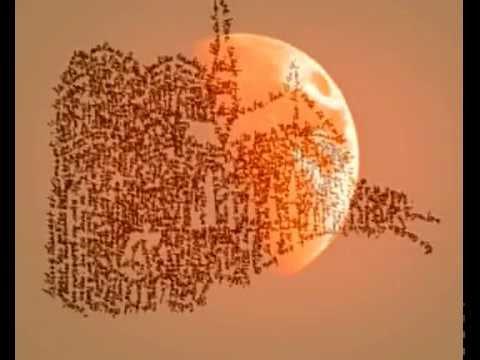 'Sogno rosso' : Poème de Nicole Coppey