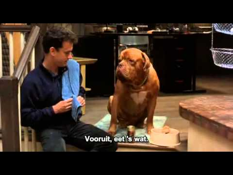 hooch - 