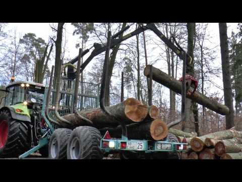 Brennholz-Aufbereitung 2017 |*Brennholz Engel*|