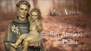 DÍA 9 - NOVENA SAN ANTONIO DE PADUA