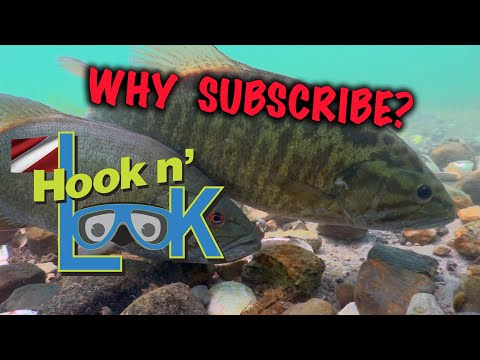 Why Subscribe to Hook n' Look?Why Subscribe to Hook n' Look?<media:title />