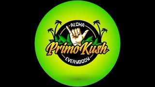 A Chill Smoke Sesh With Primo Kush by Primo Kush