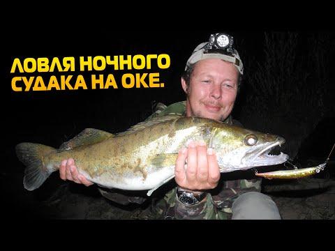 ока правила рыбной ловли