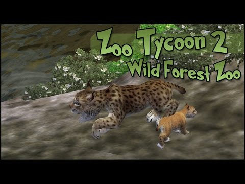 Lynx Cubs in the Wild Forest Zoo!! • World Zoo Season 3 - Episode #1