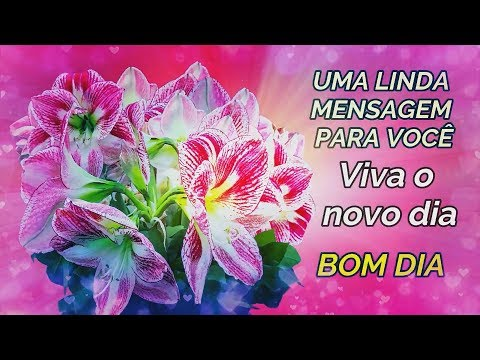 Mensagem de Bom Dia(Narrado) Viva o novo dia !( Reflexão )