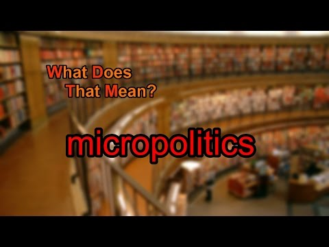 What does micropolitics mean?
