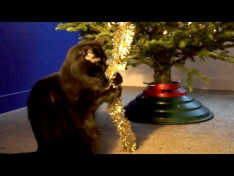 how to stop cat from climbing christmas tree