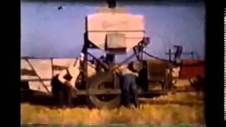 Goodland (KS) United States  city images : Wheat Harvest Goodland KS late 40's