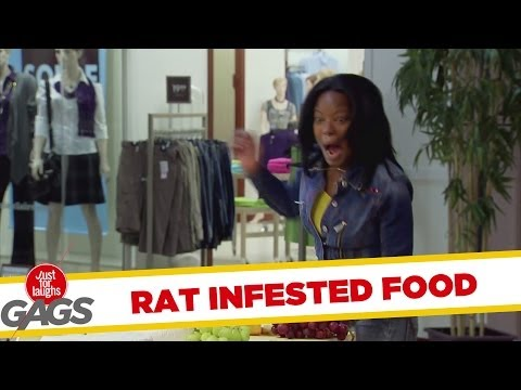 Rat Infested Cheese Sampling Plate - Youtube