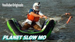 Video Catching a Mid-Air Fish MP3, 3GP, MP4, WEBM, AVI, FLV Februari 2019