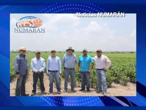 VIDEA Noticias 19 Julio 2016