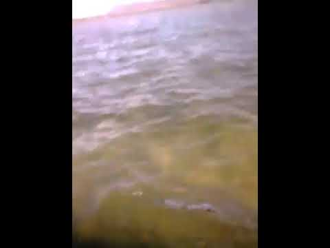 De barra do Ipanema Alagoas a ilha do ouro sergipe