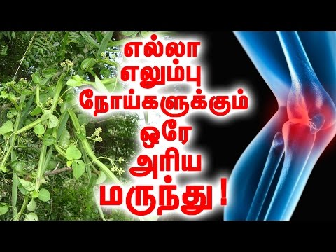 Only Remedy For All Bone Diseases!