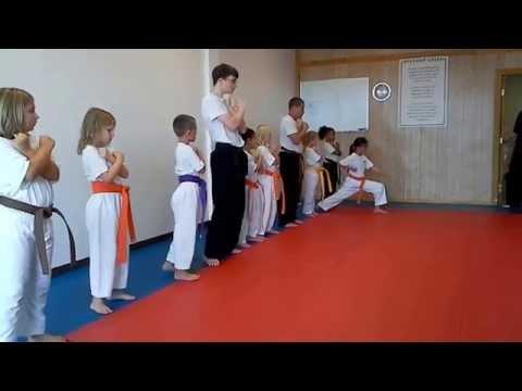 Hampton's Karate Academy - Blocks and Stances 01