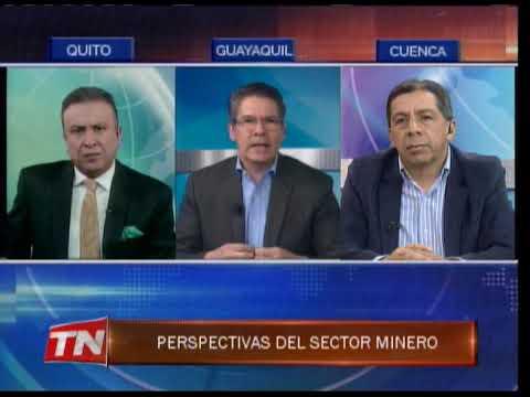 Perspectivas del sector minero
