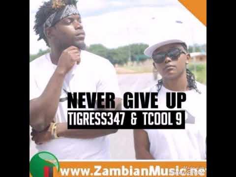 Tigress 34-7 ft Tcool 9ine Eleven