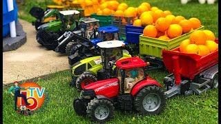 Learn Colors TRAKTOR BRUDER Case, Claas, Fendt, New Holland with Baby ORANGE