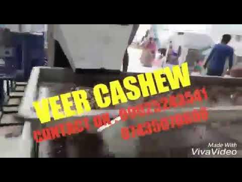 Veer Cashew Industries