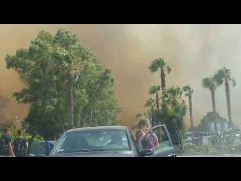 Paura alla playa, fuoco e fumo nero al boschetto