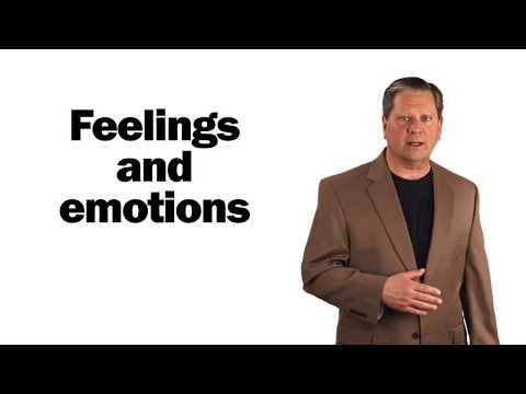 Emotional Motivators: A Higher Ed Study