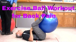 """Famous"" Physical Therapists Bob Schrupp and Brad Heineck present an Exercise Ball Workout for Back Pain using a Swiss, ..."