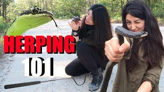 HOW TO FIND SNAKES - HERPING FOR BEGINNGERS by Emzotic