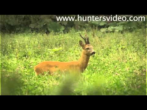 The Dream Buck - Hunters Video