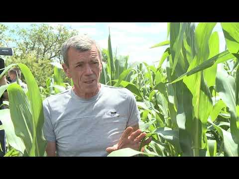 """Șeful statului a vizitat întreprinderea agricolă SRL """"Tehnostel Car"""" din raionul Hîncești"""