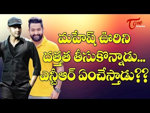 Will NTR to Follow Mahesh Babu ?