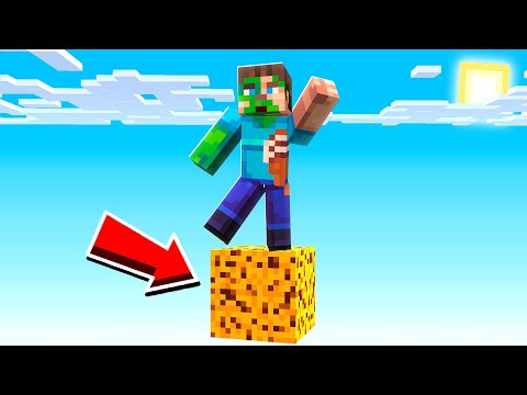 SURVIVING On The Largest COOKIE In Minecraft!