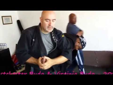 Bujinkan Budo Taijutsu Seminar in Virginia 2014