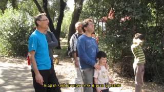 טיול צפרות(1 סרטונים)