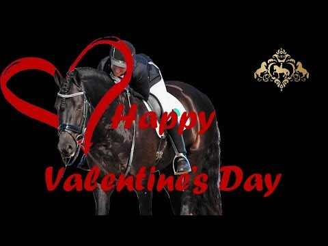 Happy Valentines Day - Weekly Wrap Up 14th Feb 2018