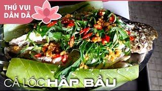 Cá Lóc Hấp Bầu l How To Cook Snakehead Fish in Vietnam. Thăm dớn dính cá lóc đồng to, khách thấy liền đặt làm món cá lóc hấp bầu. Và sau đây xin mời các bạn xem cách Chị Loan làm món Cá Lóc Hấp Trái Bầu vừa thơm vừa ngon!!!►Nhấn SUBSCRIBE để là người xem clip mới nhất đầu tiên  Please SUBSCRIBE my channel: 👉 https://goo.gl/4me63z------------------------------------►Facebook: https://www.facebook.com/thuvuidandanongthon/►Website: http://www.binhquoivillage.com------------------------------------💐 Thank you for watching my videos 💚.⚠ Copyright notes: This video was made by me (Please do not copy video clips in any form).Quán ăn dân dã Đồng Quê Ngoại: https://www.facebook.com/NgoaiBinhQuoi