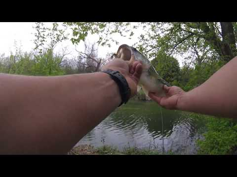 FISHING IN KILLEEN- Spring Time Small Creek Bass!