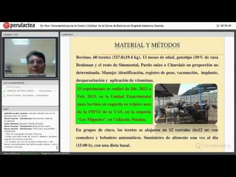 En Vivo: Zinc Orgánico y Clorhidrato de Zilpaterol en el Engorde de Ganado Bovino