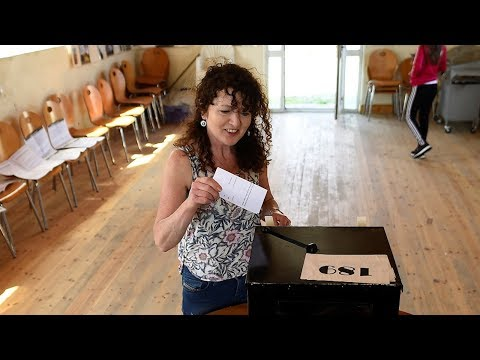 Irish citizens living abroad fly home to vote in abortion referendum (видео)