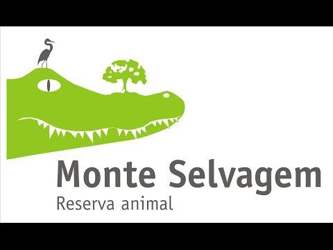 MONTE SELVAGEM REABRE EM FEVEREIRO
