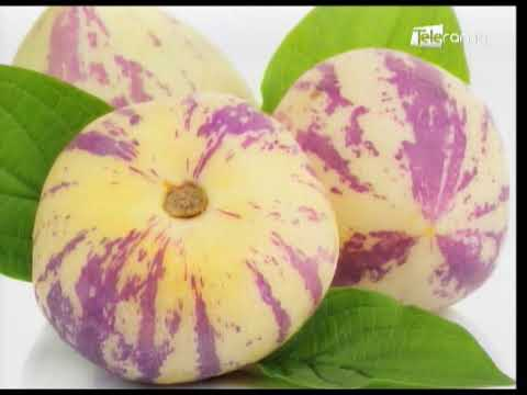 Frutas poco tradicionales de nuestro país y sus beneficios