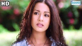 Nonton Shahid Propose S Amrita Rao   Ishq Vishk Scene   Hit Bollywood Movie Film Subtitle Indonesia Streaming Movie Download