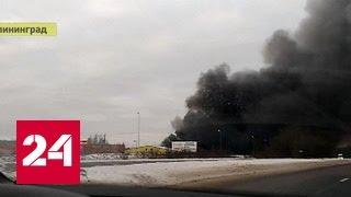 Крупный пожар под Калининградом: видео очевидца