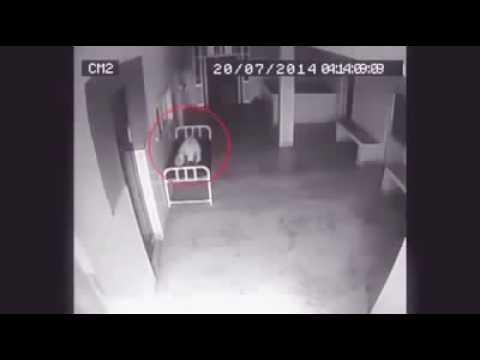 Video जब मरी महिला की लाश से निकली आत्मा download in MP3, 3GP, MP4, WEBM, AVI, FLV January 2017