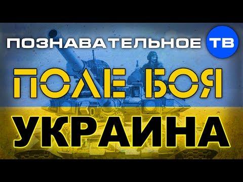 Поле боя - Украина (Познавательное ТВ, Андрей Фурсов)
