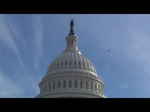 연방 의회, '총기소지' 신고로 통제  7.8.16 KBS America News