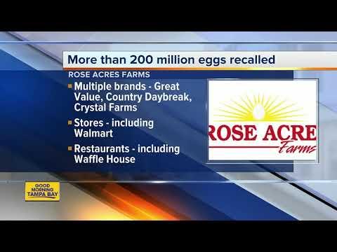 Eggs recalled due to possible Salmonella contamination