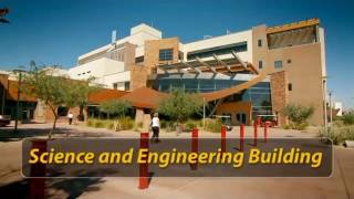 Innovation and Economic Development: Research at the SEB