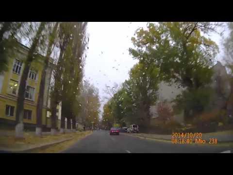 Авария из за собаки в Воронеже